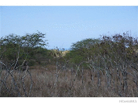 Photo of 000 Kalua Koi Rd #39, Maunaloa, HI 96770