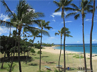 Photo of Pokai Bay Beach Cabanas #415, 85-933 Bayview St, Waianae, HI 96792