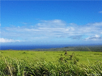Photo of D87 Kaana St, Maunaloa, HI 96770
